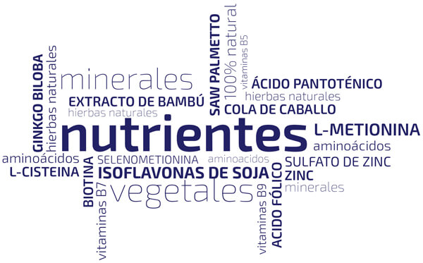 ingredientes beneficiosos para el pelo
